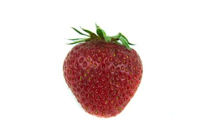 strawberry 'Florence'