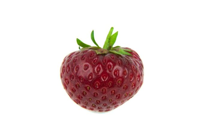strawberry 'Finesse'
